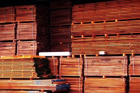 Essiccazione-legno-sito