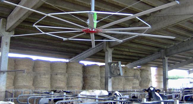 Impeller diam. 7 mt 10 blades